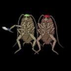 A Bad Roach's Avatar