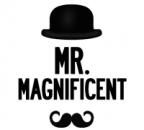 Mr Magnificent's Avatar
